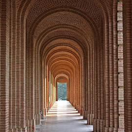 Symmetry by Anindya Roy - Buildings & Architecture Public & Historical ( building, ceiling, forest research institute, india, dehradun, architecture, Architecture, Ceilings, Ceiling, Buildings, Building )