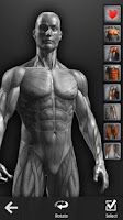 Screenshot of Barbell Gym Tracker