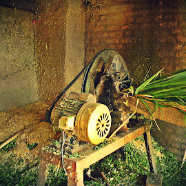 Chopper by Hassan Nasir - Novices Only Objects & Still Life ( fodder, pakistan, machinery, islamabad, village, chopper, chop, culture )