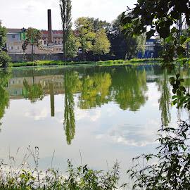 WATER  MIRROR by Wojtylak Maria - City,  Street & Park  City Parks ( reflections, pond )