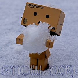 Snow Day by Lin Fauke - Typography Captioned Photos ( danbo, winter, toy, danboard, dan, snow, snowball,  )