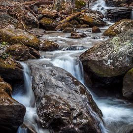 by Pam Wendel - Landscapes Waterscapes ( anna ruby falls )