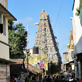 temple by Venkata Krishnan - Buildings & Architecture Places of Worship ( #temple #worship #sunday #festival #chennai )