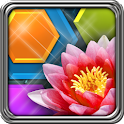 HexLogic - Flowers icon