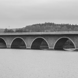Highway Over Sea by Christian Windisch - Buildings & Architecture Bridges & Suspended Structures ( water, sky, black and white, trees, sea, grey, lake, bridge,  )