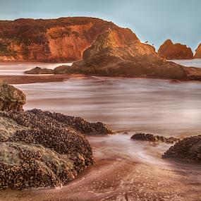 Beautiful rock formations on beach at dusk by Kathy Dee - Landscapes Beaches ( california, sunset, marin headlands, seagulls, ocean, foamy surf, beach, coastline, san francisco, coastal, dusk, rocks )