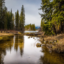 Kimball Park, Oregon by Chuck Collins - Landscapes Mountains & Hills