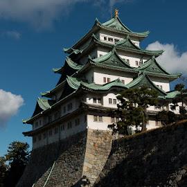 Nagoya Castle by Michael Holser - Buildings & Architecture Public & Historical ( castle keep, tower, japan, castle, nagoya )