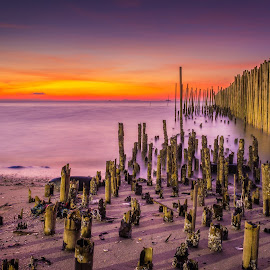 then the waves came by JethroLlarenas Abagao - Landscapes Sunsets & Sunrises ( water, bamboo, underwater, waves, long exposure, sunrise,  )