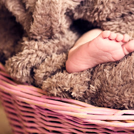 Ivy's Tootsie by Chinchilla  Photography - Babies & Children Hands & Feet