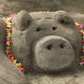Piggy by Janet Marsh - News & Events Entertainment ( beach, san francisco, sandcastle,  )