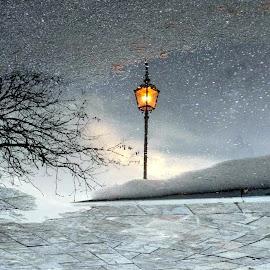 alone by Marta Kolczyńska - City,  Street & Park  Street Scenes