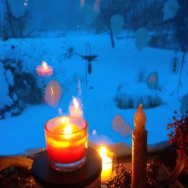 Colbie by Ellen Haines - Instagram & Mobile iPhone ( 2015, Blizzard, soquietandbeautiful, snow )
