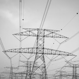 Powerlines by Rejith Reghunathan - Buildings & Architecture Bridges & Suspended Structures (  )