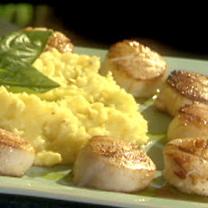 Pan-Seared Scallops with a Yukon Gold Potato Mash and Basil Oil