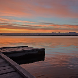 Peaceful morning by Gayle Wilcox - Novices Only Landscapes ( serenity, sunrise, landscape, river )