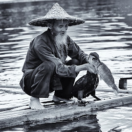 Fisherman and cormorant, Yangshuo by Dharmali Kusumadi - People Professional People