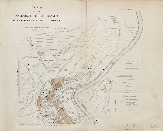 Plan of the Government House Reserve, Botanic Gardens, 1864. Reproduced  courtesy of the Map Collection, State Library of Victoria.
