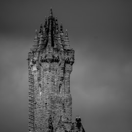 Wallace Monument by Jaqueline Nicholsn - Buildings & Architecture Statues & Monuments ( black and white, places of interest, architecture, historical, tall )