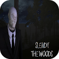Slendy: THE WOODS (SlenderMan) APK for Bluestacks
