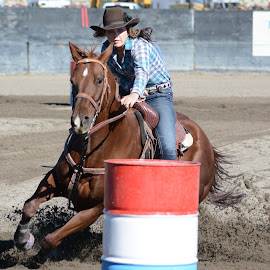 Barrel Racing by Laura DeSimone - Sports & Fitness Rodeo/Bull Riding
