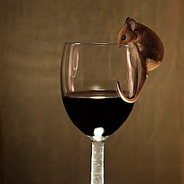 Tipsy Mouse by Jim Westcott - Artistic Objects Glass ( editorial, will negotiate useage, tabletop, artistic, commercial, wineglass )