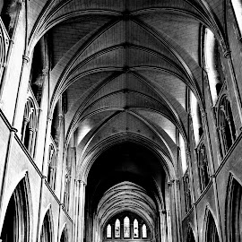 St. Patrick's Cathedral by Michael Hourigan - Buildings & Architecture Places of Worship ( st. patrick's cathedral, b&w, ireland, church, dublin, architecture,  )