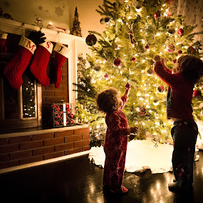 Decorate by Mike DeMicco - Public Holidays Christmas ( xmas, christmas, children, kids, cute, glow, siblings, stockings, playing, love, sweet, tree, happy, new years eve, fireplace, decorating, light, new years )