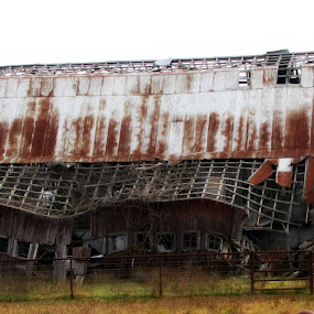 Busted Barn by Sue Neitzel - Buildings & Architecture Decaying & Abandoned ( broken, farm, old, barns, rustic,  )