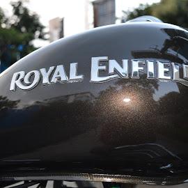 Royal Enfield by Pranavesh NeverSerious - Transportation Motorcycles ( bike, cruiser, royal enfield, motorcycle, transportation )