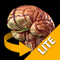 Brain 3D Anatomy Lite APK Descargar