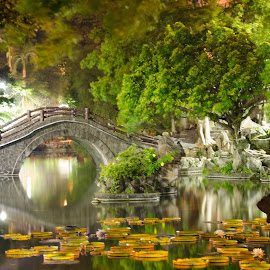 chinese garden in taipei by Sisnarf RN - City,  Street & Park  City Parks (  )