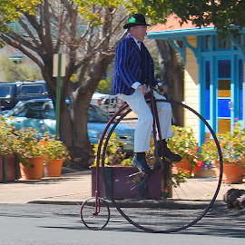 The Farthing by Terry West - Transportation Bicycles ( ride, old, bike, vintage, penny farthing,  )