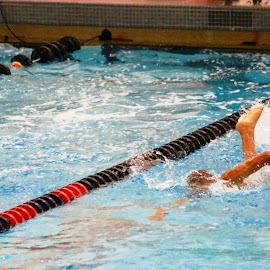 Barrington Swim Meet by Jon Radtke - Sports & Fitness Swimming ( barrington swim meet )