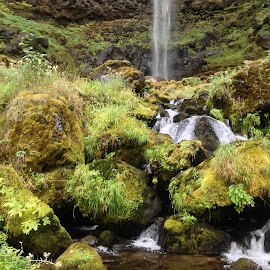 Watson Falls by Becca McKinnon - Instagram & Mobile iPhone ( water, fishcreek, oregon, fall, falls, waterfall, watsonfall, moss, rocks )