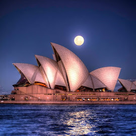 Light up the House by Tim Searle - Buildings & Architecture Other Exteriors ( architecture, opera house, sydney )