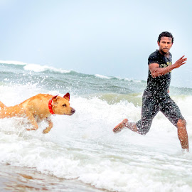 MAN VS DOG by Sridhar Boopathy - Animals - Dogs Running ( jumping, play, elliots, yellow, beach, gold, dog, run, running, beacj, man, chennai )