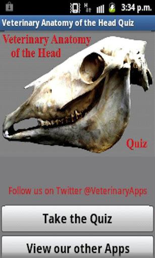 Vet Anatomy Of The Head Quiz