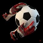 Goal Keeper icon