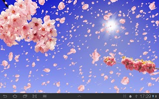 Screenshot of Sakura Live Wallpaper