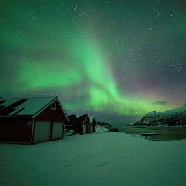Aurora over the rorbu by Marius Birkeland - Buildings & Architecture Homes ( houses, sky, aurora borealis, aurora, snow )