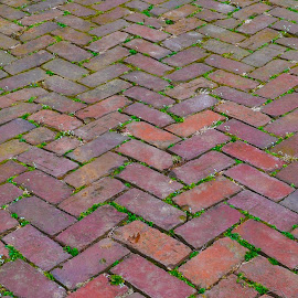 Brick Path Way by Teresa Francis - Abstract Patterns ( walking, red, pattern, background, path, herringbone, bricks, walk way, walk )