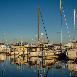 Marina Sunset by Mark Franks - Transportation Boats ( harbor, sunset, twilight, ocean, boat, dusk )