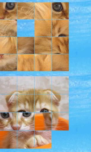 puzzle cat b 4x4