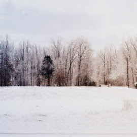snow  by Debbi Young - Landscapes Weather ( old house, field, ice, snow )