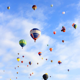Balloon Filled Sky by Charles Kuster - Transportation Other ( hot air balloon, sky, color, balloon )