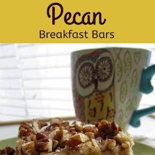 Paleo Coconut Pecan Breakfast Bars