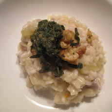 Pork & Cider Risotto with Sage Pesto and Fried Sage and Chestnut Topping
