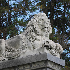 King  by Anna Tripodi - Buildings & Architecture Statues & Monuments ( cool, lion, king, statues', cemerety,  )