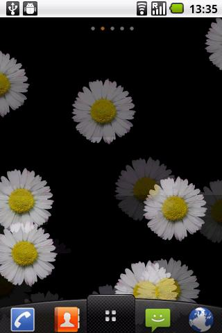 White Flower Live wallpaper